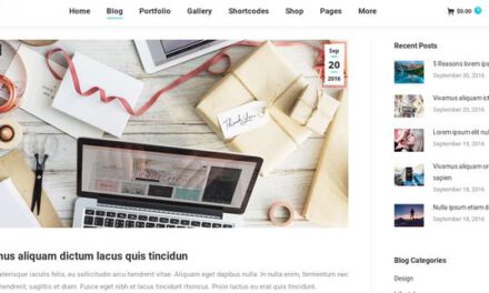 Review of The7: A powerful WordPress theme with over 1000 options